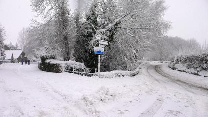 snows-1